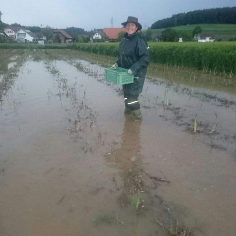 Wenn der Bach bei Hochwasser über das Ufer tritt
